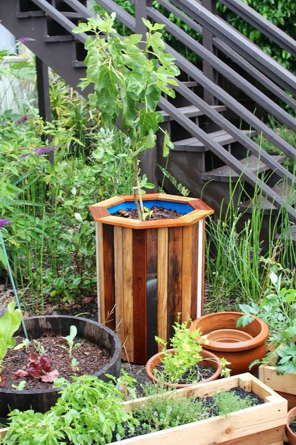 barrel tree planter