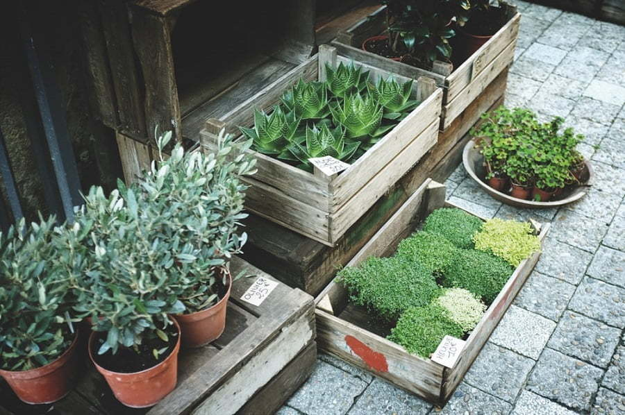 deck planter boxes